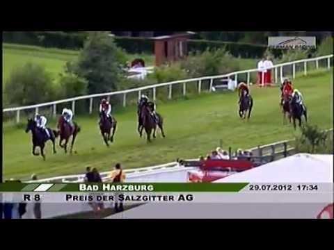 Racebets.Com - Die Pferdewette Im Internet - Pferdewetten Online