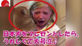 外国人の少女に、日本犬をプレゼントしたら、うれしくて大号泣♪ ☆チャン...