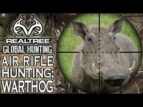 Benjamin Bulldog Big Bore Air Rifle Hunting in South Africa: Warthog