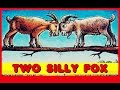 Two Silly Goats Story California Kids