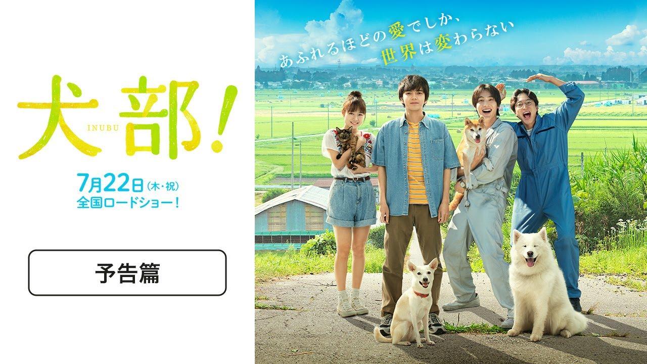 『犬部!』予告篇【7月22日(木祝)公開】