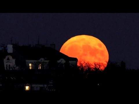 Largest supermoon since 1948 lights up the sky