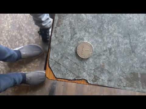 United arab coin