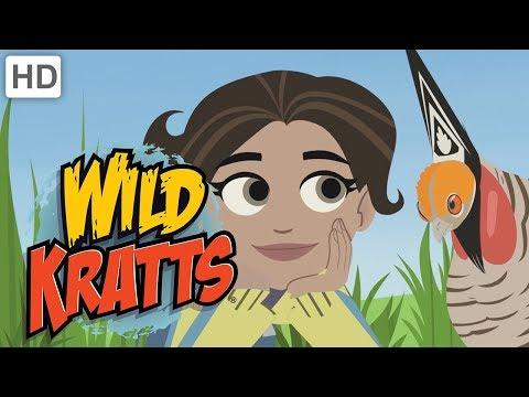 Wild Kratts - Calling All Bird Mates