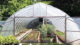 Urban Farming in a Toronto Backyard