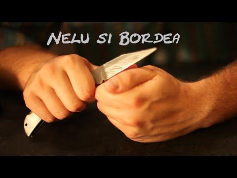 NELU & BORDEA