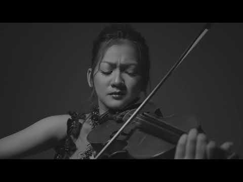 Speechless (Naomi Scott) Violin Cover By Nanda Candra