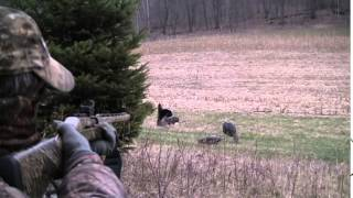 Wisconsin Turkey hunting