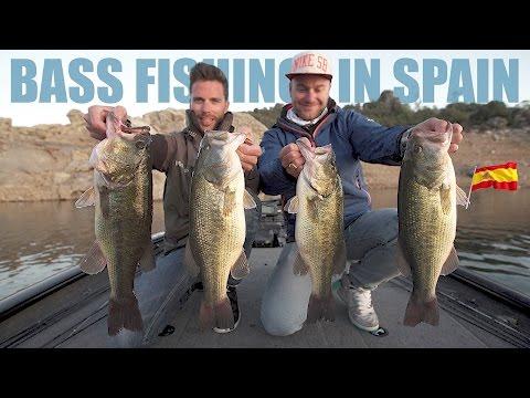 Bass Fishing in Spain