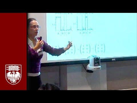 Natalia Komarova on Language Evolution