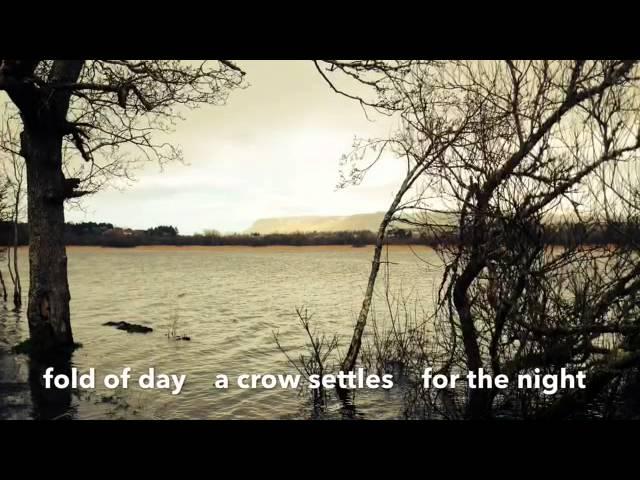 HaikuLife 2015: Celtic Heartbeat