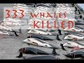 Whalers Kill 333 Whales, 122 Pregnant (Japan)