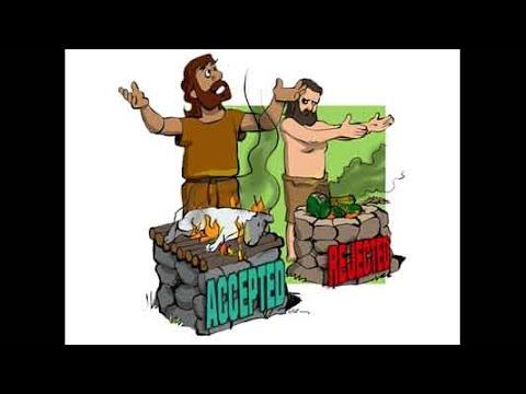 聖經簡報站:初信造就(5) 人生的目的與道路