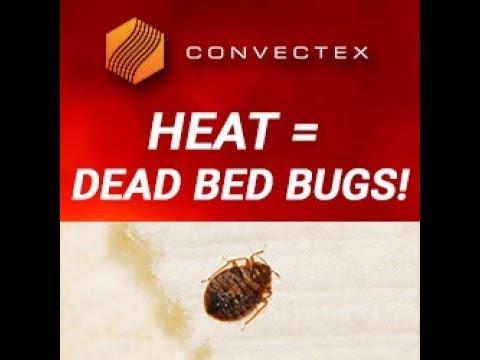 convectex bed bug heater