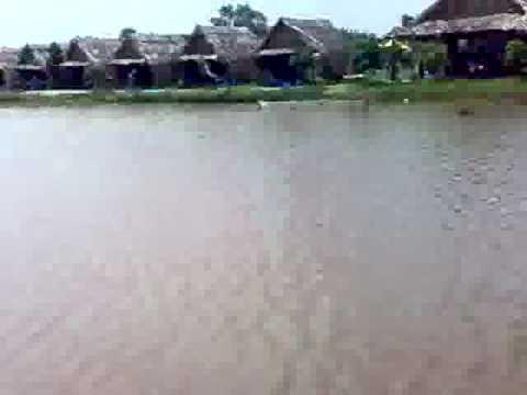 Câu cá ở Hồ Vườn Dừa- Q9- VN by ngocquy1908