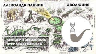 видео: Александр Панчин - Современный взгляд на эволюцию