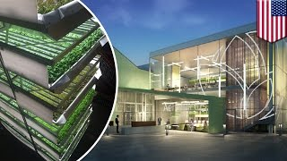 Largest indoor vertical farm uses 95 percent less water and produces more per square feet -TomoNews
