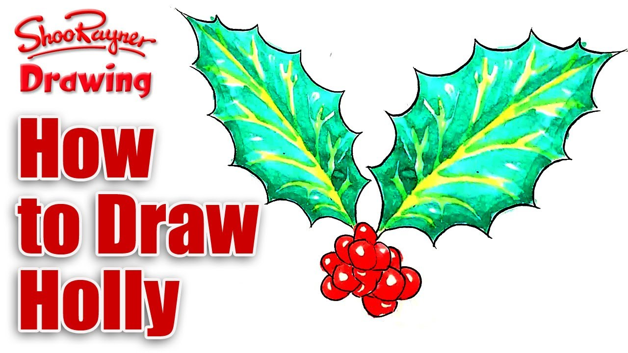 how to draw a christmas 2017 holly leaf