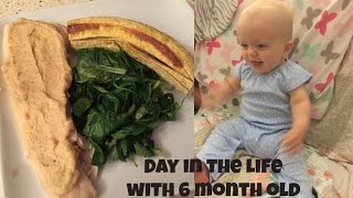 Working mom with diastasis. 6 month old baby. What I ate in a day.