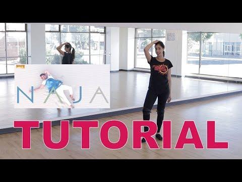 NaJa | Pav Dharia | Bollyfunk Dance Tutorial | Fusion Beats Dance | Francesca