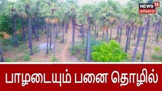பயிர்த்தொழில் பழகு: பாழடையும் பனை தொழில் | Extinct Career related to palm trees
