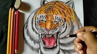 Cara Gambar Kepala Harimau Dengan Mudah Dan Cepat