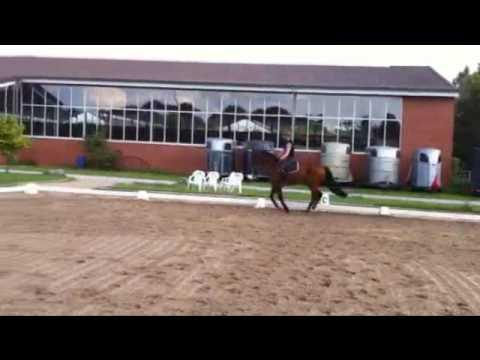 Cric Crac by CorradoI-Fasolt, *2009, 4x with rider