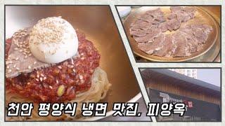 천안 최고의 평양식 냉면 맛집