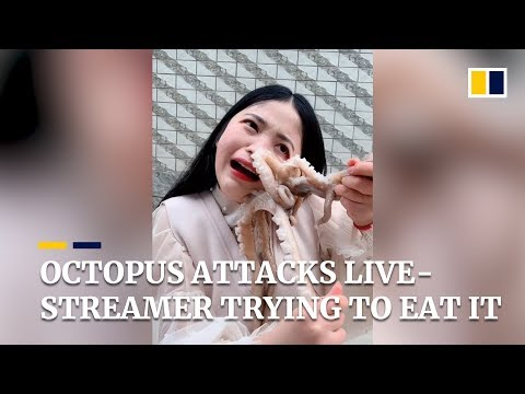 octopus-attacks-live-streamer-as-she-tries-to-eat-it-alive-in-china