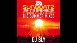 DJ Sly Sunbeatz Summer Mix 2014