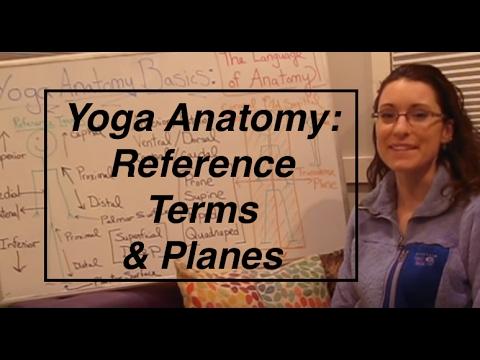 Ashtanga Yoga Vocabulary You Need To Learn