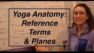 """Yoga ANATOMY Basics1""- Reference Terms & Planes of the Body: LauraGyoga"