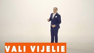 VALI VIJELIE - Ce-ai facut cu viata mea (VIDEO OFICIAL 2018)