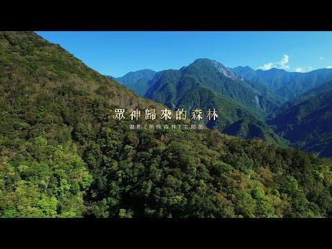 《黑熊森林》主題曲 MV...