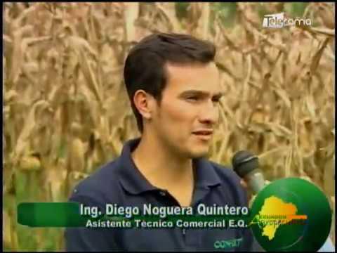 Ecuador Agropecuario 17-07-2018
