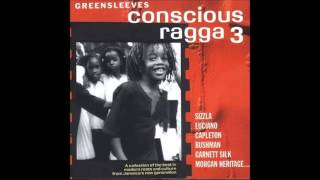 George Nooks / Beres Hammond / Bounty Killer / Junior Kelly / Morgan Heritage - Peace Cry
