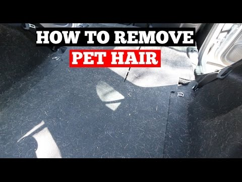 how to remove pet hair from car interior car detailing tips youtube. Black Bedroom Furniture Sets. Home Design Ideas