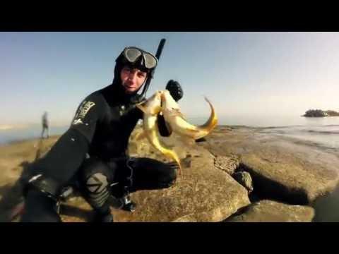 подводна охота видео
