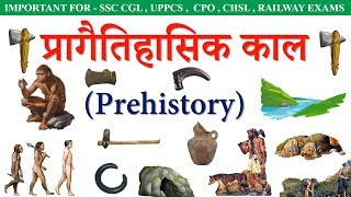 Prehistory(प्रागैतिहासिक) in hindi || ancient history || Stone Age, Bronze Age, Iron Age, Lecture 1