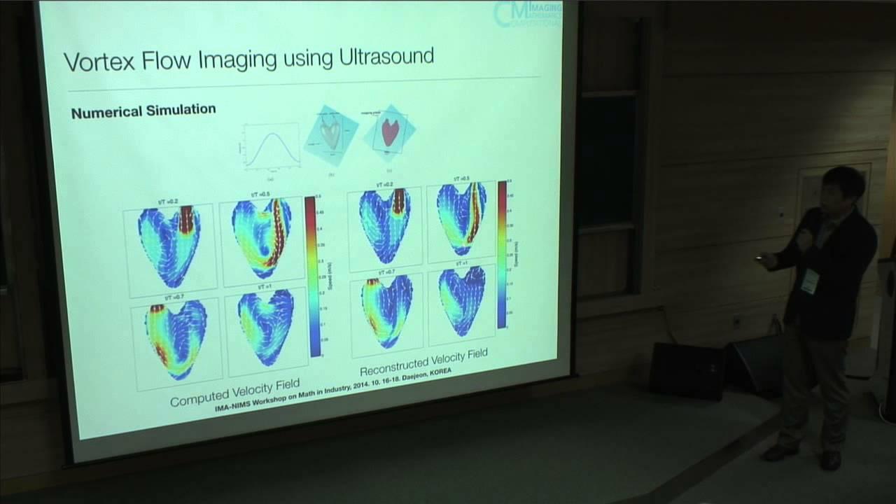 Vortex Flow Reconstruction using Ultrasound