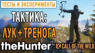 theHunter Call of the Wild #8 СТРИМ 🔫 - Тактика: Лук + Тренога