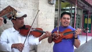 Oye Pecador - Los Sánchez Música Campirana