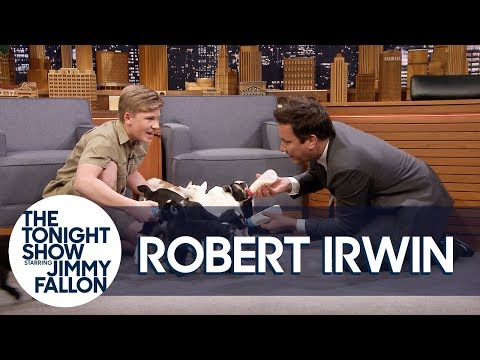 Robert Irwin and Jimmy Feed Baby Pygmy Goats