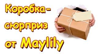 Семья Бровченко. Коробка - сюрприз от Мэй Лили. Супер подарок для детей!!! (10.16г.)