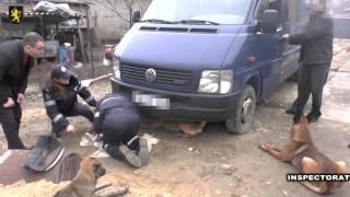 Grupare specializată în circulația drogurilor, anihilată de poliţia din Ceadîr –Lunga