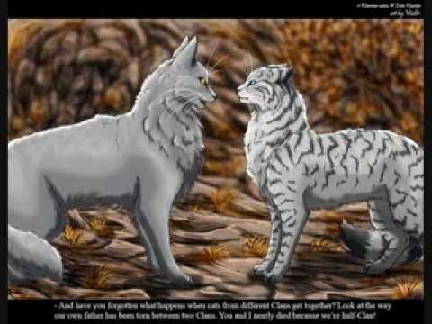 Feathertail War... Leafpool And Crowfeather Mating