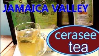 Jamaica Cerasee Tea Benefits Of Jamaican Cerasee Tea At Home  Recipes By Chef Ricardo