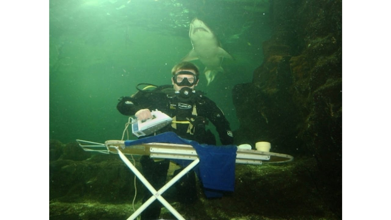 Image result for Extreme Ironing