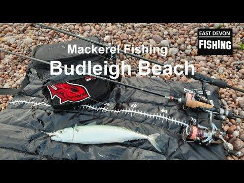 Mackerel Fishing At Budleigh Beach.