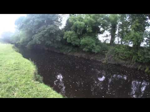 River Lagan Iveagh Club Water